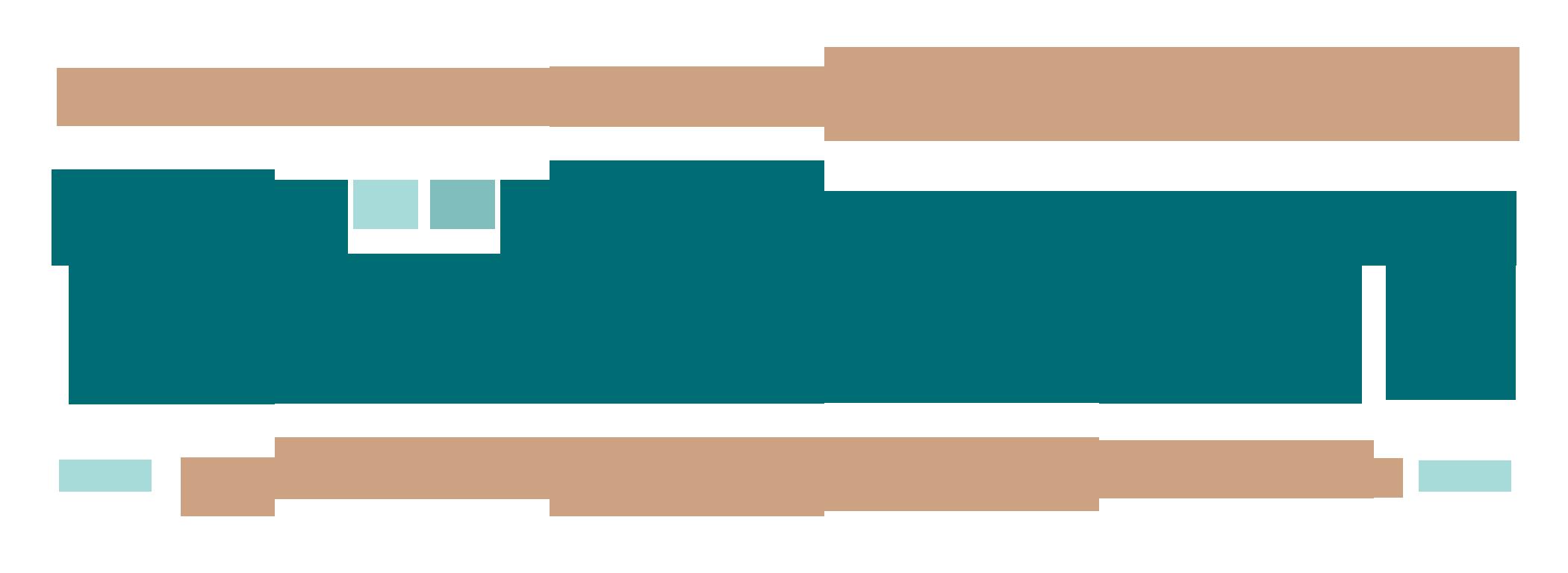 MasterPlan-Logo-noTexture